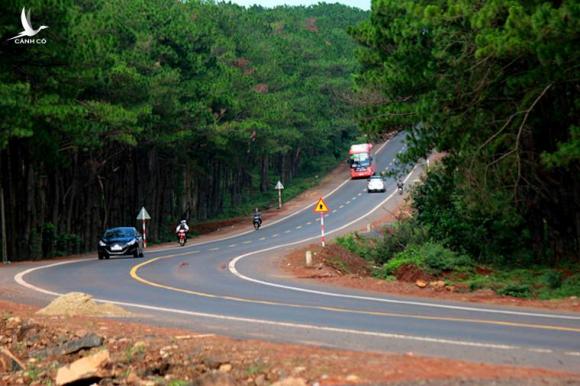 Dọc tuyến đường có hàng trăm khúc cua mềm mại dưới tán thông già tạo cảm giác yên bình không khác gì những tuyến đường của Châu Âu.