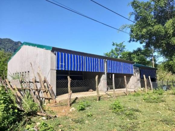 Trúng thầu xây 67 chuồng bò giá 11,4 tỷ đồng ở Nghệ An, đơn vị thi công kêu lỗ - 1