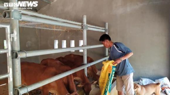 Trúng thầu xây 67 chuồng bò giá 11,4 tỷ đồng ở Nghệ An, đơn vị thi công kêu lỗ - 3