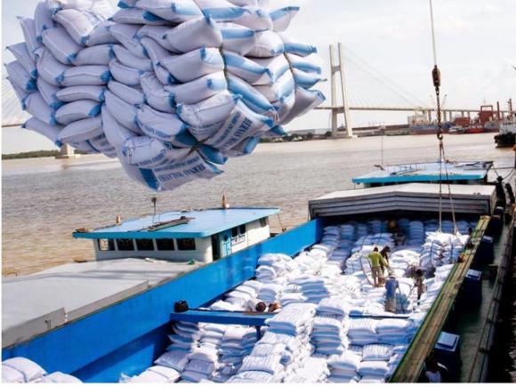 Gần 700 triệu USD hàng Việt vào châu Âu sau 2 tháng EVFTA có hiệu lực - 2