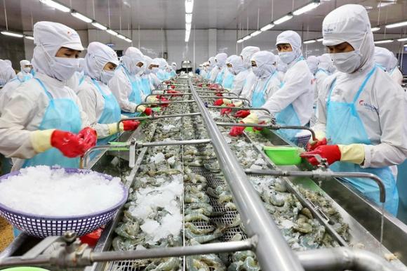 Gần 700 triệu USD hàng Việt vào châu Âu sau 2 tháng EVFTA có hiệu lực - 1
