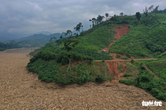 Hàng ngàn mét khối gỗ trôi lấp kín mặt nước hồ thủy điện Đăk Mi 4 sau lũ - Ảnh 3.