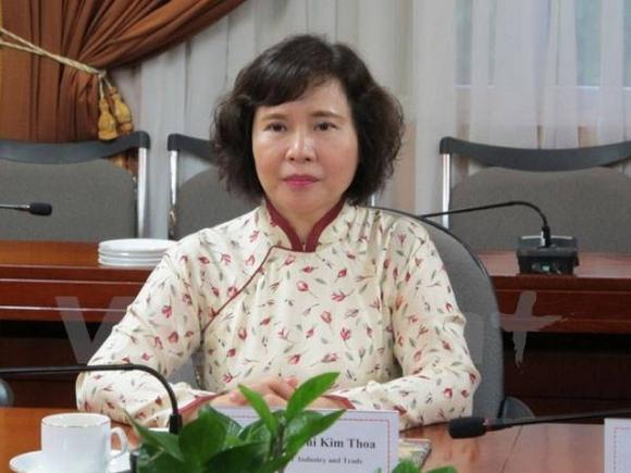 Bà Hồ Thị Kim Thoa: Từ Tổng giám đốc doanh nghiệp đến cựu Thứ trưởng bị khởi tố - Ảnh 2.