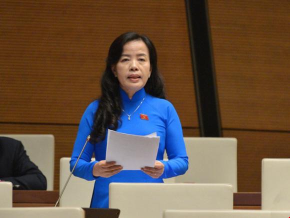 Đại biểu trăn trở: Thông tin đất đai minh bạch sao có Alibaba bán dự án ma? - Ảnh 1.
