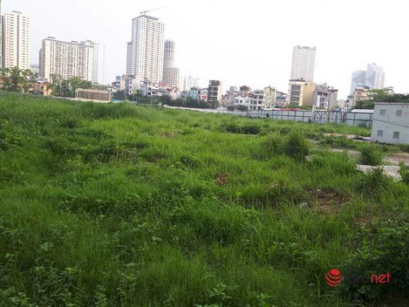 Hà Nội: Những dự án om đất vàng, để cỏ mọc um tùm sau những tấm tôn quây kín - Ảnh 6.