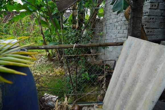 Khu vực đất tranh chấp phía sau nhà ông Thà rộng 24,5m2. Ảnh: Trần Tuyên