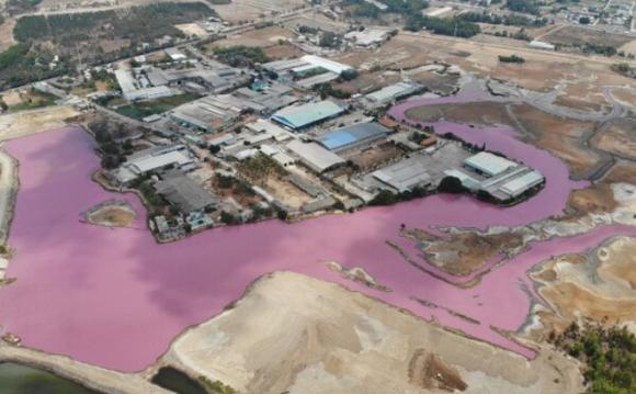 Đầm nước đổi màu tím ngắt ở Bà Rịa - Vũng Tàu: Nghê Huỳnh của ai, làm ăn thế nào?