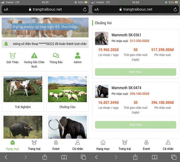"""App """"trang trại bò Úc"""" được mở ra sau khi """"trang trại tiết kiệm"""" bị sập với giao diện giống nhau /// ẢNH CHỤP MÀN HÌNH"""