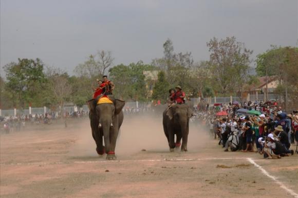 Đua voi tại tại xã Krông Na, huyện Buôn Đôn, Đắk Lắk 2019. Ảnh Hữu Long