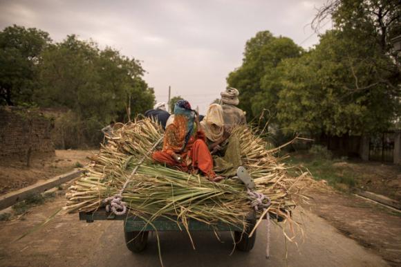Ấn Độ: Nhiều gia đình bị xóa sổ do COVID-19, dân nghèo sợ hãi tới mức không dám nói mình bị sốt - Ảnh 1.
