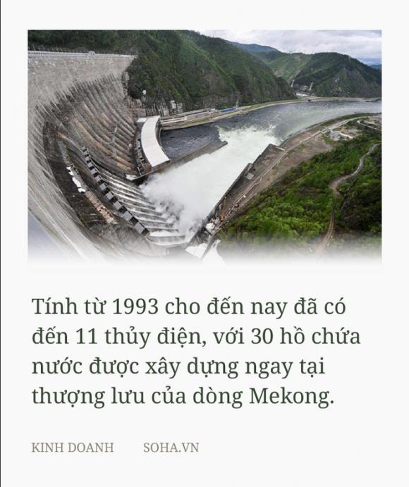 Thưa GS Võ Tòng Xuân, nói Trung Quốc hoàn toàn vô can là khôɴɢ đúɴɢ - Ảnh 2.