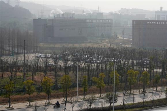 Cơ quan nghiên cứu Mỹ kết luận COVID-19 bùng phát từ phòng thí nghiệm Vũ Hán - 1