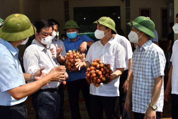 Bộ trưởng Lê Minh Hoan: g.i.ả.i c.ứ.u làm ᴛổn ᴛнươɴɢ thêm nông dân, Bộ NNPTNT cùng 3 đoàn thể sẽ bán nông sản cho ND - Ảnh 1.