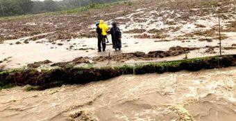 Sau sạt lở đất nghiêm trọng ở Gia Lai mùa lũ, FLC vẫn được tỉnh giao 170ha đất rừng làm sân golf